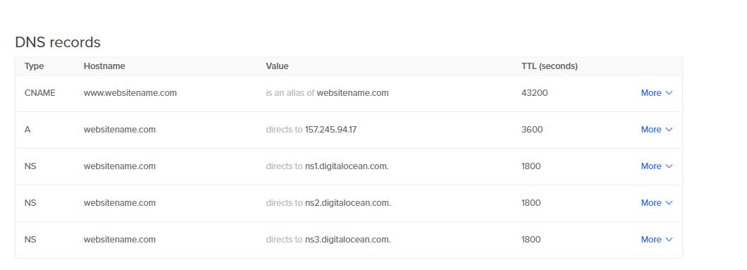 Last DNS records